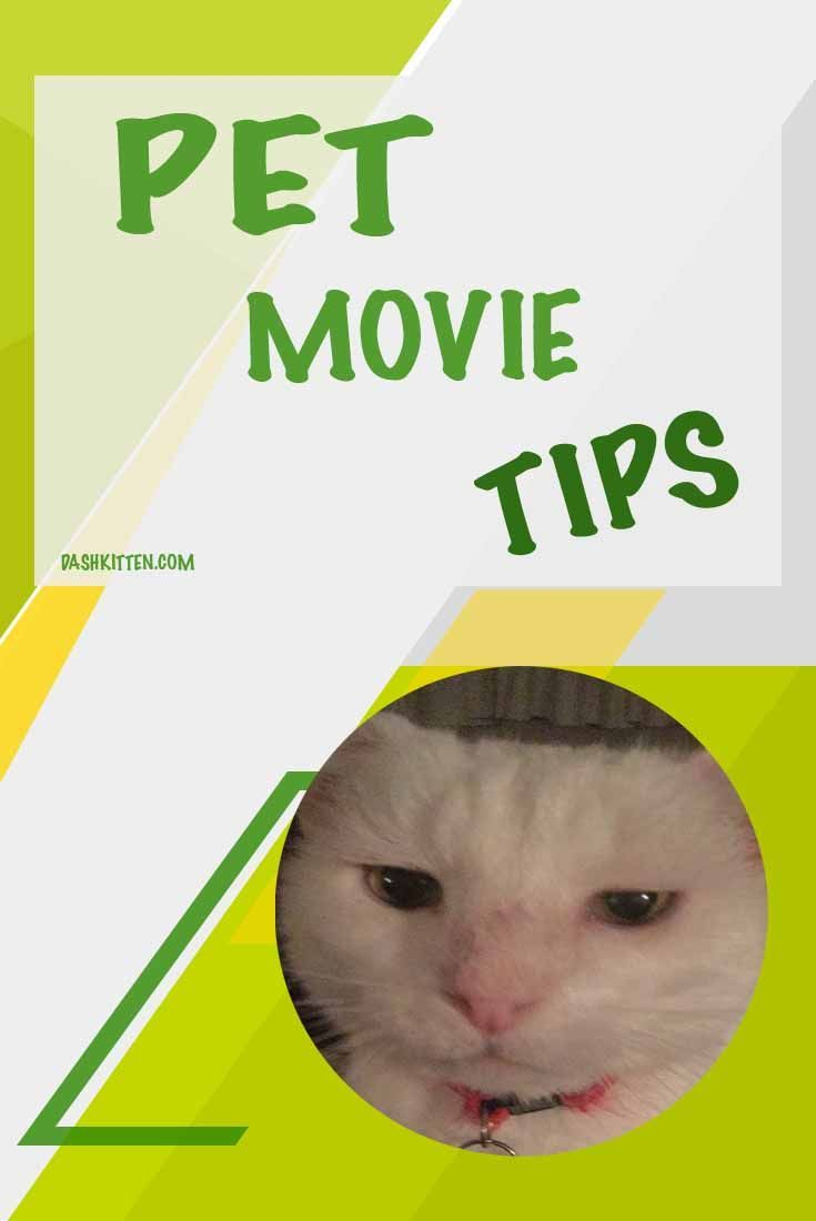 Want to know more about making your own movies? See our collection of tips 'n tricks posts.  We can give you app tips, and step by steps! Check us out! (scheduled via http://www.tailwindapp.com?utm_source=pinterest&utm_medium=twpin)