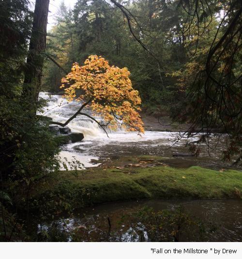 granny falls nanaimo