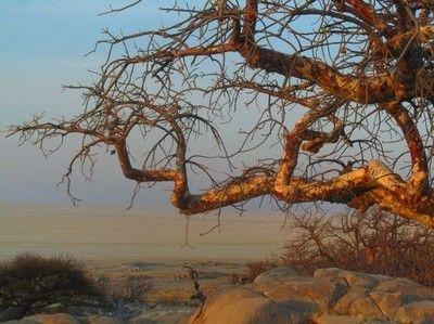 Maryannwest's Photos - ViewBug.com - ViewBug.com
