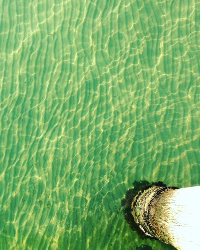Seaside beauty ✔️ #waves #ripples #ocean #beach #thebeach #melbournebeach #surf #coastal #🐬 #beachlife #gypsy #gypsysoul #colourpop #vsco #vscofashion #monday #mondaystyle #australianmade #australianbeaches #beachhouse #australia #beauty #inspiration #bayside #ripple #freshair #melbournefashion #fashionblogger #lifestyleblogger