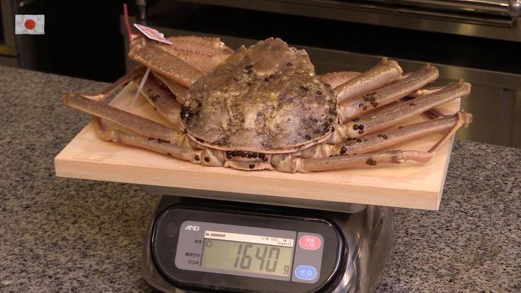 日本料理 龍吟 学会発表 予告 2015