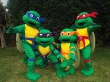 turtle mascots www.firstchoicebouncycastlehire.co.uk