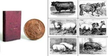 Victorian book of farm animals - YES