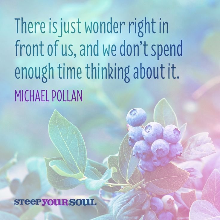 Quotes About Wonder: 359 Best Quotes Images On Pinterest