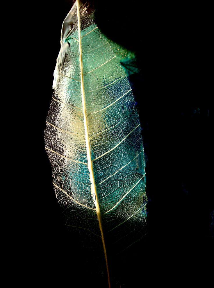 """""""Lollipop Paper"""" by  DIAGNE N'DEYE"""