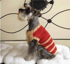Abrigo para perrito mediano tejido en dos colores! Dos agujas, palitos, kni...
