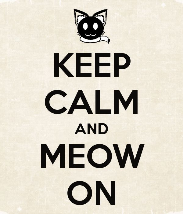 KEEP CALM AND MEOW ON...Sparky lives on!