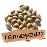 Hennepzaad is het zaad van de bekende plant Cannabis sativa. Het is een nutritioneel wonder, met een enorme verzameling van aminozuren en vetzuren met een optimale verhouding van omega-3 en omega-6 vetzuren.