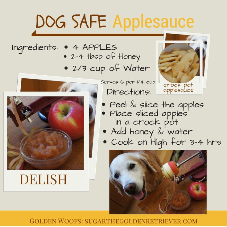 Make Your Own Dog Safe Applesauce | Pumpkin dog treats ...