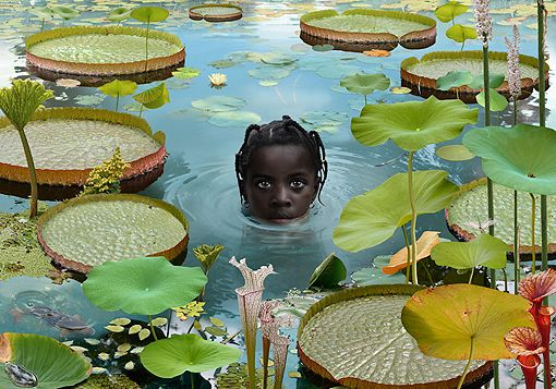 Ruud van Empel | WORLD #7