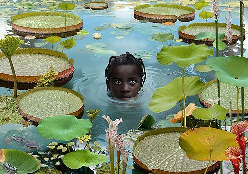 Ruud van Empel Photoworks  1995-2010  World #17 2006 / Cibachrome/ 100 x 300 cm / 118,1 x 39.4 inches