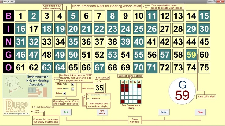Bingo Hall Edition software by Bingo Rose main screen