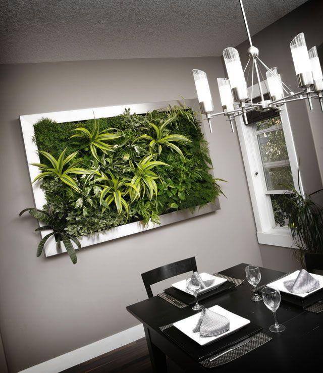 Nature's Art Living Walls | Contact Us, Indoor Vertical Wall Garden Systems