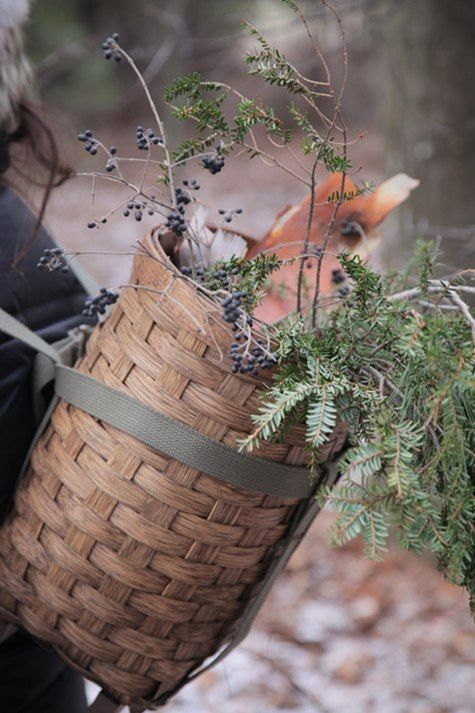 basket filled with kindling. beautiful.