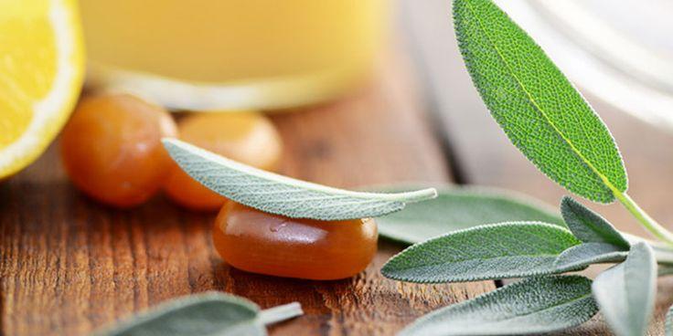 Die schmecken auch ohne Husten: Entdecken Sie hier, wie Sie ganz einfach wohltuende Salbei-Honig-Ingwer-Hustenbonbons selber herstellen können! Zum Rezept: