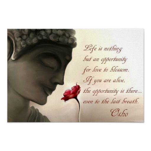 Dynamic meditation quotes