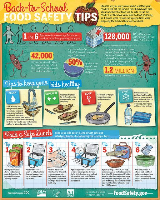 Infographic summarizing points in bag lunch fact sheet.