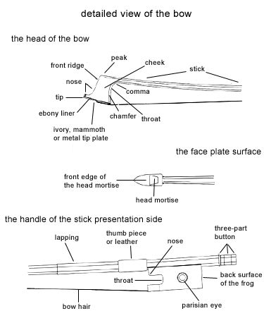 39 best images about Parts of the violin on Pinterest ...
