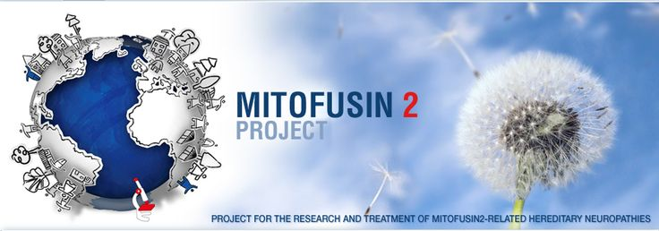 Since those of us who are sensitive to art tend to be more attuned to people's feelings and motivations I would like to draw your attention to children affected by a very rare hereditary neuropathy caused by a mutation in a protein called MITOFUSIN 2 (MFN2).This disease evolves slowly, and it is very disabling. A small group of parents and relatives of affected children started an association called Progetto Mitofusina 2  http://www.progettomitofusina2.com/en/home