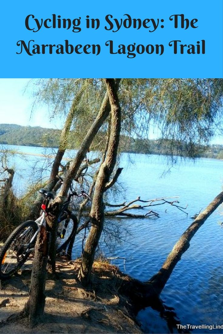 The Narrabeen Lagoon Trail: a cycling and walking path in Sydney, Australia