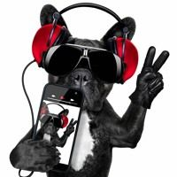 Visit Music Reloaded on SoundCloud