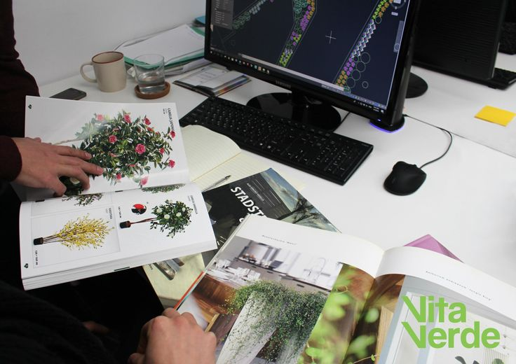 Friday morning mood - selecting plants for a project.🌼  Remember to subscribe to our newsletter to get tips and updates. 📝⏩www.vitaverde.gr    #vitaverde_gr #notyourordinaryspace #FridayFriyay