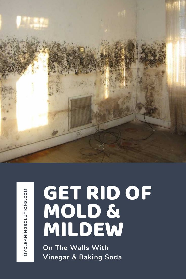 Get rid of mold & mildew on the walls with vinegar and