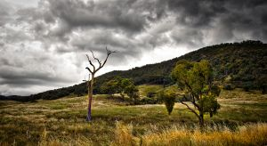 Mountain Range - Tumut NSW