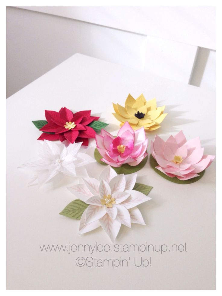 60 best paper punch flowers images on pinterest paper flowers stampin up festive flower punch mightylinksfo Choice Image