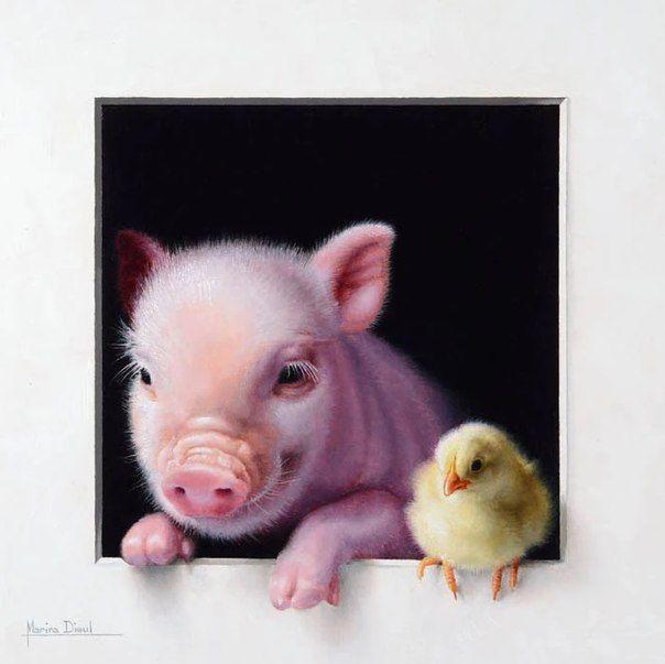 Свинья и птицы картинки