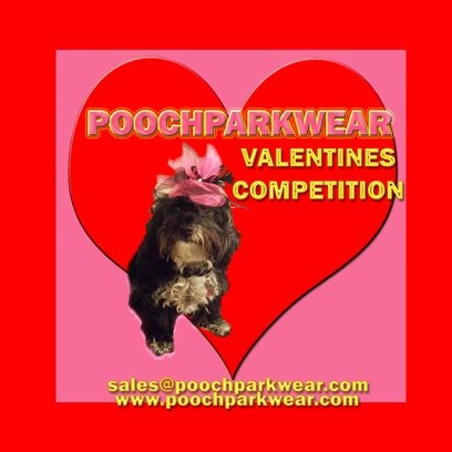Go to our website, sign up for newsletter, in contact form describe your dog in one word to win :)
