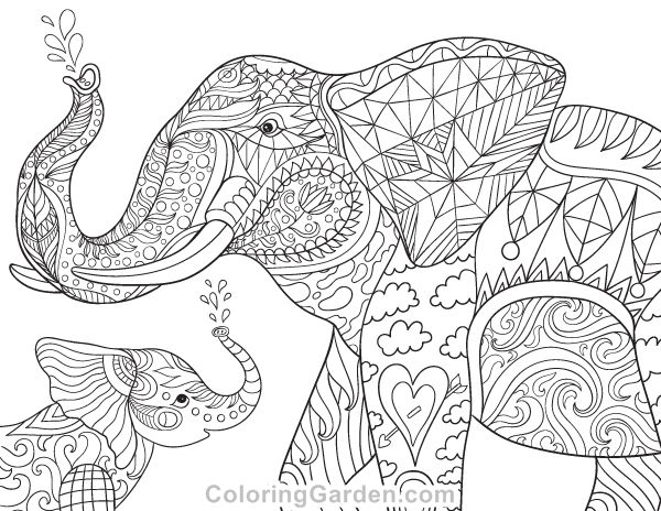 173 best elephant coloring pages for adults images on