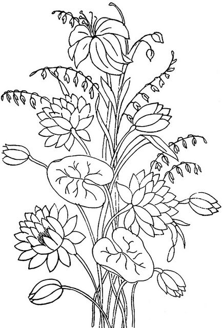 500 best floral coloring pages for adults images on