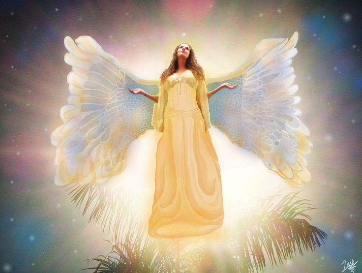 Sheer Wrap - Mystic Angel M by VIDA VIDA wTDxdX