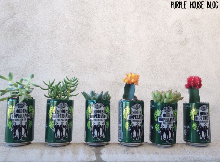 beer can planter DIY - purplehouseblog.wordpress.com