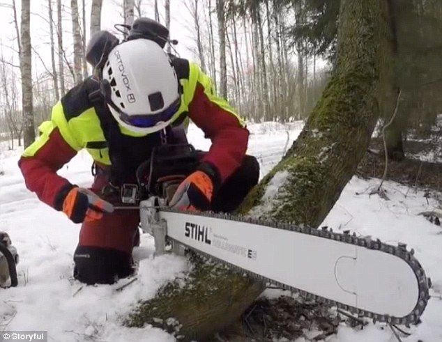 Cezary is filmed sharpening the teeth of his chainsaw before filling it with fuel in a sno...