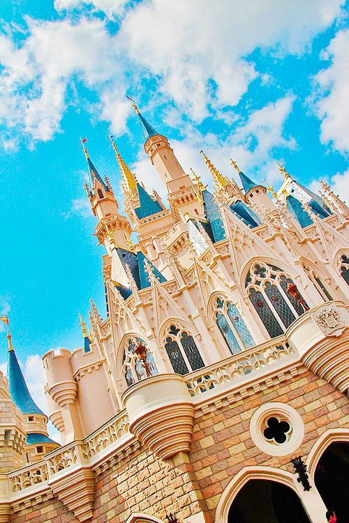 Magic Kingdom  - Wedding Venue. (I'm wishing :P)
