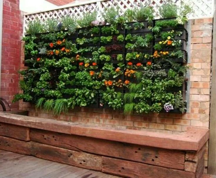 36 best Organic wall garden images on Pinterest Walled garden