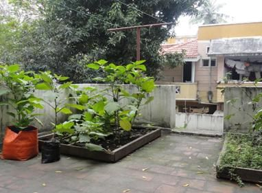 16 Best Rooftop Garden India Images On Pinterest Roof