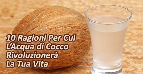 L'acqua di cocco è una bibita che offre al corpo molti benefici nutritivi. Molte ricerche [Leggi Tutto...]