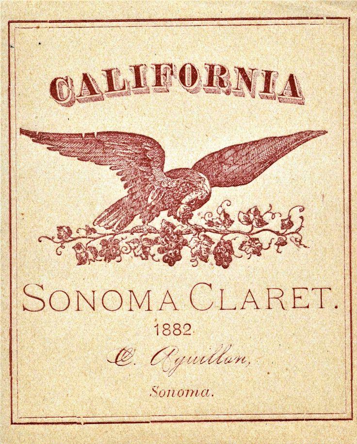 696 best San Francisco Ephemera, Vintage Postcards, Posters, Maps - best of birth certificate oakland ca