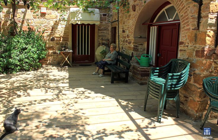 """Kambos area . Chios island . """"Ms Ioanna and her cat"""""""
