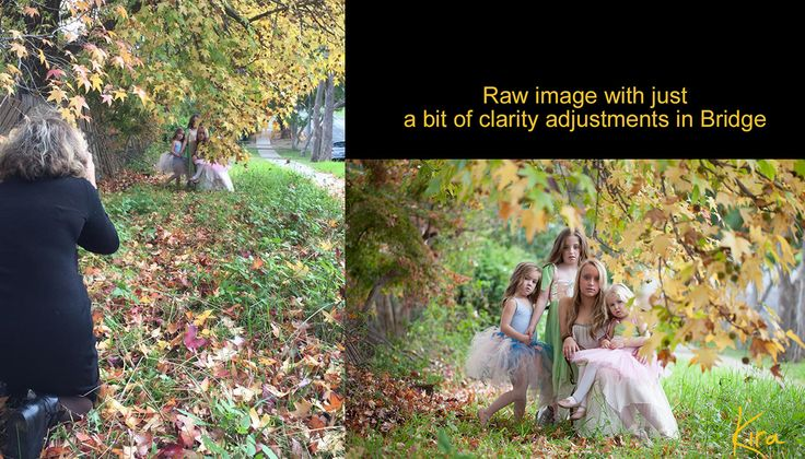 Learn How To Capture Incomparable Images With Creative Photography Classes