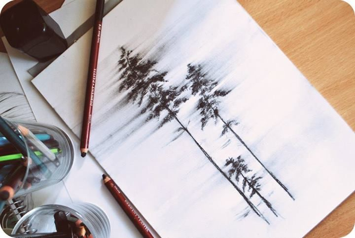 Trees drawing by Olenka More here : https://www.facebook.com/pages/Olenka/647167888679052