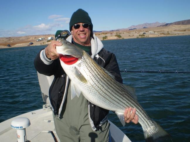 30 best images about fishing in the southwest on pinterest for Oregon fish stocking schedule