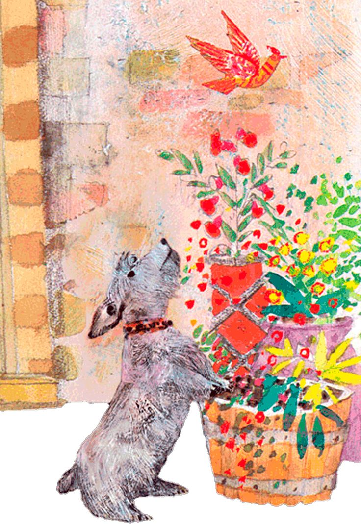 Colour childrens literature - Brian Wildsmith Was Raised In A Small Mining Village In Yorkshire England Where He Says Everything Was Grey There Wasn T Any Colour
