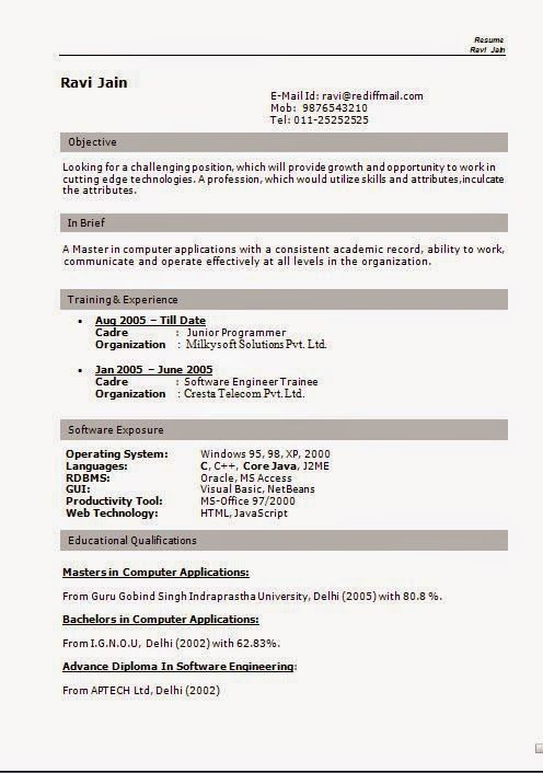 free cv template download Sample Template Example of ExcellentCV - engineering cv template