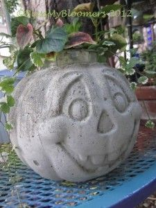 Are you ready for another easy but messy Jack-O-Lantern project? Supplies are minimal....a large plastic  Jack-O-Lantern (they are really  cheap in thrift stores) along with a bag of cement, a larg...