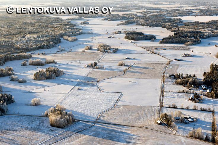 Talvinen peltomaisema Ilmakuva: Lentokuva Vallas Oy