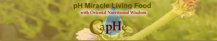 Caphe Cafe located at Coast Inn and Spa Fort Bragg California - Vegan restaurant - must try this when we are in CA.